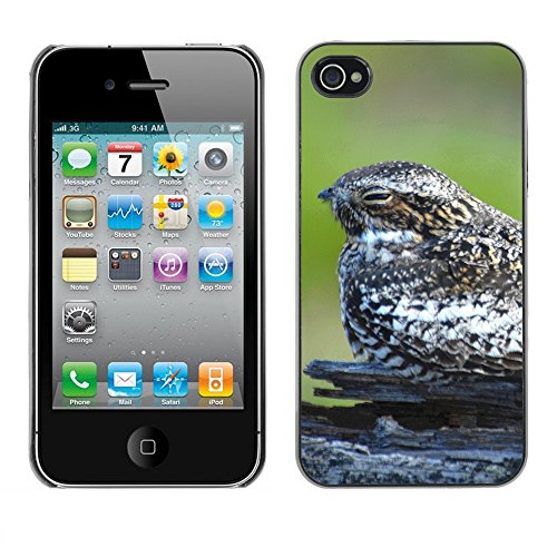 Premio Sottile Slim Cassa Custodia Case Cover Shell // F00004500 oiseau dleepy // Apple iPhone 4 4S 4G