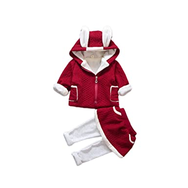 a94e20fd2 Feicuan Girls' Winter Outfits, Baby 2Pcs Clothing Sets Fleece Suits Jacket  Pantskirt Rabbit Ears Hoodie for 0-3 Years Old: Amazon.co.uk: Clothing