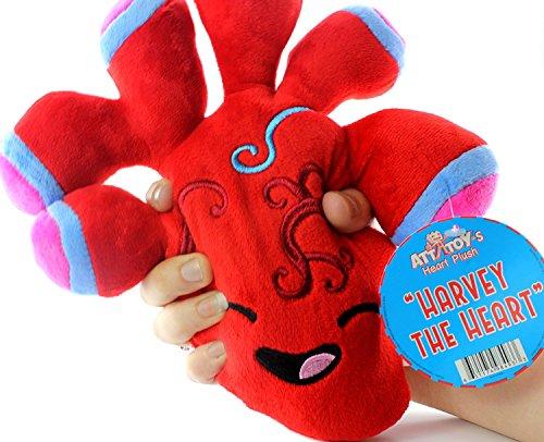 "Plush Heart, Stuffed Toy Organ Heart Plush, 10"" x 9 x 3"