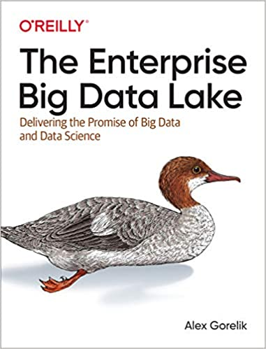 Portada libro Big Data The enterprise big data lake