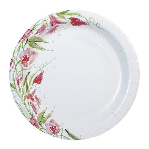 Nicole Home Collection 48 Count Everyday Paper Plate, 8-5/8-Inch, Pink Floral