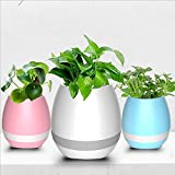 Flowerpot Night Light Smart Touch bluetooth Music Plant Lamp Rechargeable Wireless Play Piano on a Real Plant Musical Boxes (without Plants) White