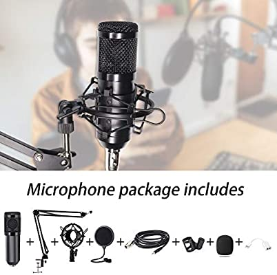 Computer Microphone, Gaming Mic with Adjustable Boom Arm Stand, USB PC  Microphone for Video Recording Studio Streaming External Microphone for  Laptop (Black-Boom Arm): Amazon.com.au: Electronics