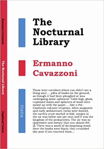 Image result for Ermanno Cavazzoni, The Nocturnal Library,