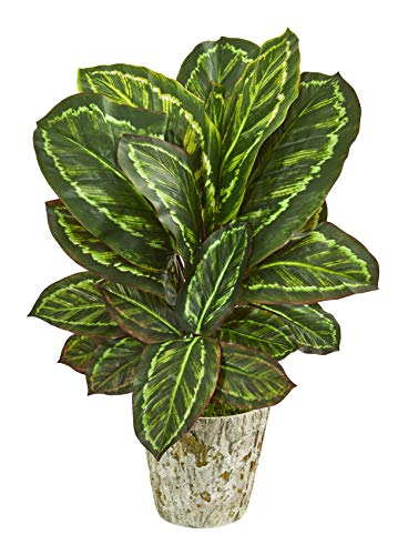 Artificial Plant -26 Inch Maranta Plant with Weathered Oak Planter Silk Plant