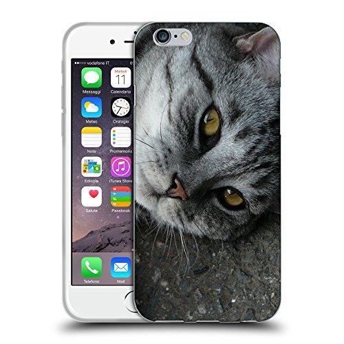 """Just Phone Cases Coque de Protection TPU Silicone Case pour // V00004259 Allongé gris chat tigré // Apple iPhone 6 4.7"""""""