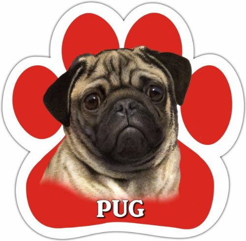 Pug Car Magnet With Unique Paw Shaped Design Measures 5.2 by 5.2 Inches Covered In UV Gloss For Weather Protection E/&S Imports 13125-31