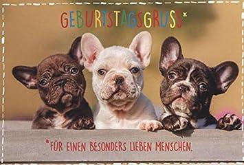 Geburtstagskarte Hunde Glückwunschkarte Geburtstag