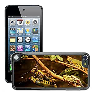 Etui Housse Coque de Protection Cover Rigide pour // M00108475 Barbacoa Saltamontes Saltamontes // Apple ipod Touch 5 5G 5th