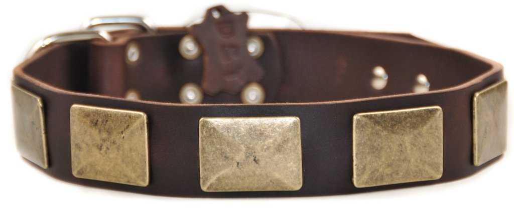 Dean and Tyler BRASS PLATE Dog Collar Nickel Hardware Brown Size 41cm x 4cm Width. Fits neck size 14 Inches to 18 Inches.