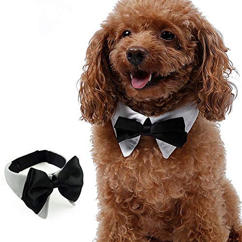 Momo Pet Dog Cat Bowtie Satin Collar Cute Formal Adjustable Gentlement Neckerchief Set Fashion Party Accessories for Small Medium Large Dogs, for Wedding, Christmas, and Birthday XL