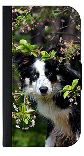 Border Collie-TM Leather-Look Apple iPhone 5, 5s Universal Wallet Case with Closing Flip Cover and Credit Card Slots Made in the - Collie Border Beautiful
