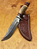 Handmade Deer Antler Handle Hunting Knife Damascus Blade Stag Collection With Leather Sheath Premium (A235)