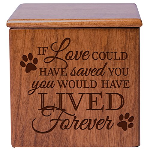Large Memory Keepsake Bear Ashes Pets Adults Funeral Celebration SECONDS
