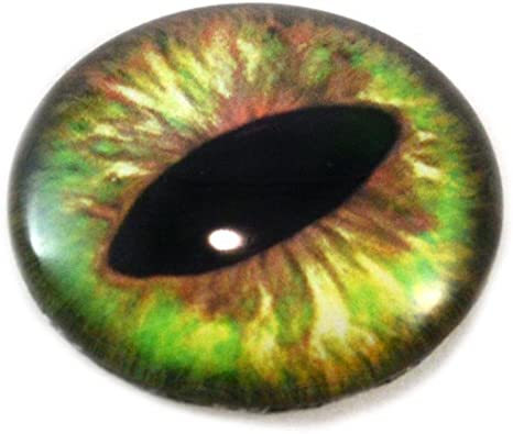 """1/"""" Doll Eyes Realistic Human Glass Taxidermy Eyeballs 25mm"""