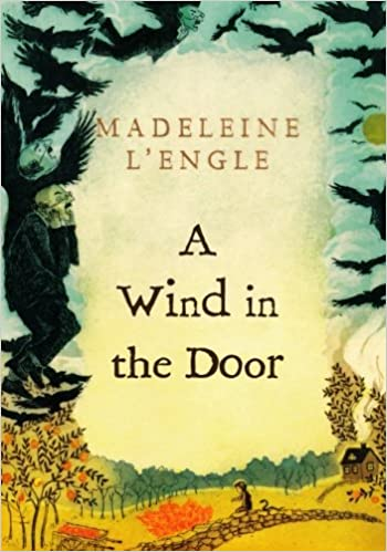 Image result for a wind in the door