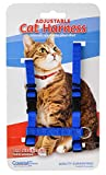 Coastal Pet Adjustable Figure H Cat Harness, Blue | Girth Size: 10
