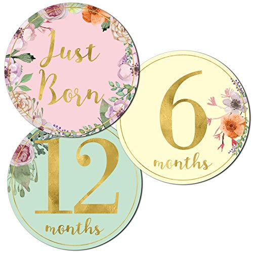Newborn Baby Girl Gold Floral Milestone Stickers, 1st Year Belly Decals, Set of 12 Monthly Photo Props for Infant Onesie, Scrapbook Keepsake Shower Basket & Registry Gifts