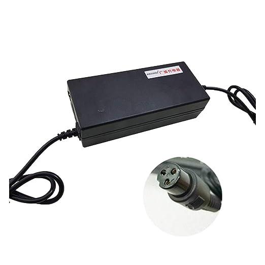 XULONG Cargador de batería Adulto de la Vespa eléctrica ...