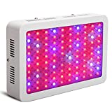 KinGrow Full Spectrum 300W LED Grow Light, Efficient Double Chips Bulbs for Indoor Grow Tent Hydroponic Plants Veg and Flower