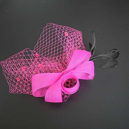 dds5391 Ladies Retro Elegant Feather Fascinator Hair Clip Hat Wedding Cocktail Mesh Net Veil Headband (Rose Red) Rose Band Tea Setting