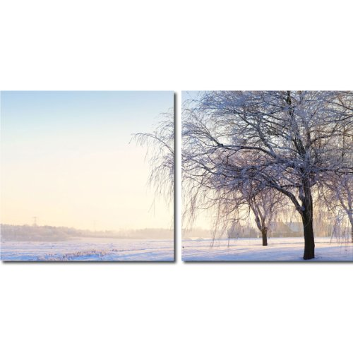 picture of Baxton Studio Snowy Solitude Mounted Diptych Photography Print