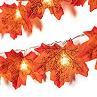 GiBot Thanksgiving Autumn Maple Light String 20 LED Light Fairy Light 8 Light Mode Switch (with Remote Control) 3AA Battery Powered for Room Decoration Birthday Party Wedding Girl Room Outdoor Garden