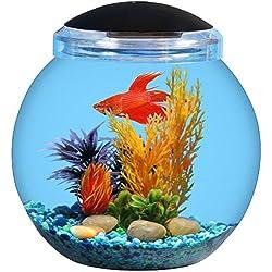 BettaTank 1.5-Gallon Fish Bowl with LED Lighting