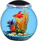 KollerCraft 1.5 Gallon Betta Fish Bowl with LED Lighting