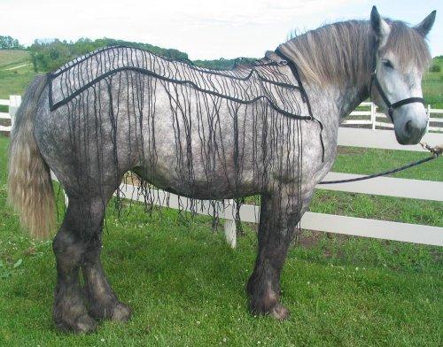 Weaver Nylon Webbing Draft Horse Fly Net - Fly Sheet