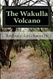 The Wakulla Volcano, Rodney Letchworth, 1484165748