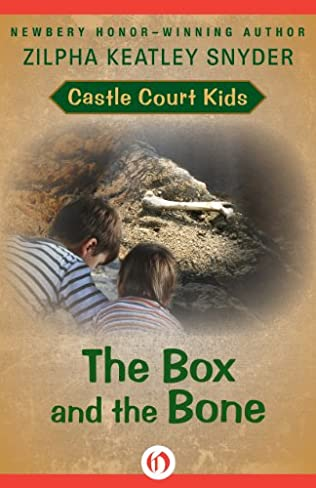 book cover of The Box and the Bone