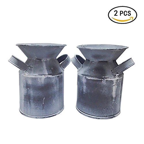 Watering Honey Mini Country Rustic Primitive Jug Vase Milk Can for Office Desktop Decoration~2 Pack ,Grey