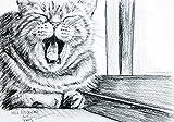 Sleepy original watercolor cat animal pet drawing painting