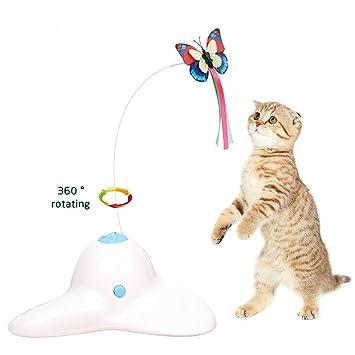 Amazon.com: Zenes - Mariposa de juguete para gato, juguete ...