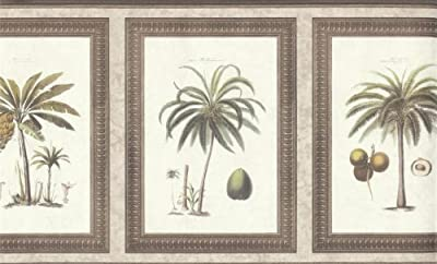 Wallpaper Border Waverly Framed Palms Taupe, Silver