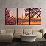 "wall26 - 3 Piece Canvas Wall Art - Cherry Blossom Festival at the National Mall Washington, Dc - Modern Home Decor Stretched and Framed Ready to Hang - 24""x36""x3 Panels"