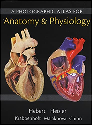 Amazon Practice Anatomy Lab 30 Lab Guide Modified Mastering