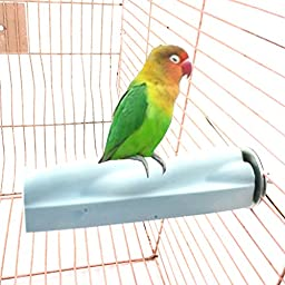 Qin ChenChen Feet and Beak Safety Perch for Birds Toy Grinding Stones
