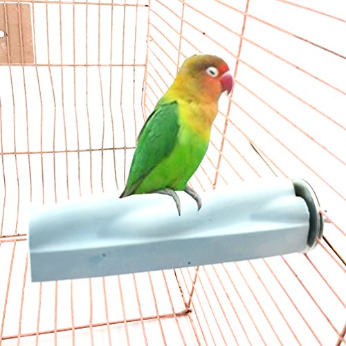qin chenchen Soul Friend-us Cage Rough-surfaced Feet Beak Safety Perch Small Birds Toy Grinding Stones