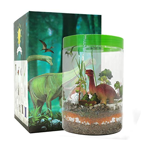 Light-up Terrarium Kit for Kids with LED Light on Lid- STEM Educational DIY Science Project – Create Your Customized…