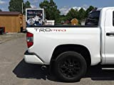 BDTrims Truck Bed Raised Letters Compatible with