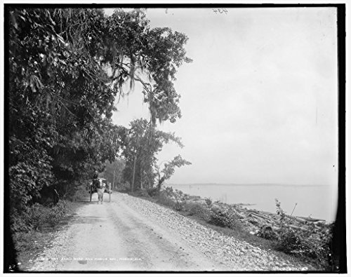 40 x 30 Ready to Hang Canvas Wrap Bay Shell Road and Mobile Bay Mobile Ala 1900 Detriot Publishing 64a by Vintography (Image #1)