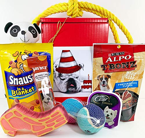 Dog Gift Box Basket for A Favorite Canine Fur Baby - Bulldog Bull Dog with Birthday Cake - Send These Treats and Toys to a