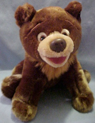 koda bear - 5
