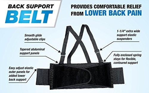Cordova SB-M Back Support Belt with Attached Suspenders, Black, Medium by Cordova (Image #3)