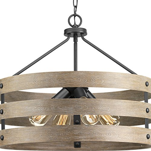 Progress Lighting P500023-143 Gulliver Four-Light Pendant, Graphite