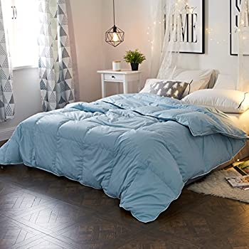 Amazon.com: Queen Size Duvet Insert Goose Down Winter Comforter ...