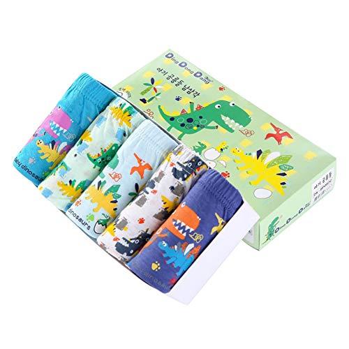 RAISEVERN Cute Little Boys \'Packs 5 Underwear Boy Hipster 3D Chameleon Stampa Slip Pantaloni di Sicurezza Boxer 12-13 Anni