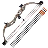 AW 34'' Junior Compound Bow Kit w/4pcs 28'' Arrow Set Youth Archery Right Hand Draw Weight 20lbs Hobby